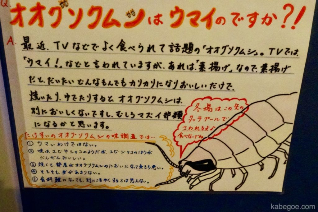 Takeshima Aquarium Bathynomus doedrum
