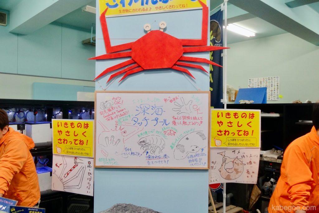 Kolam Sentuh Akuarium Takeshima
