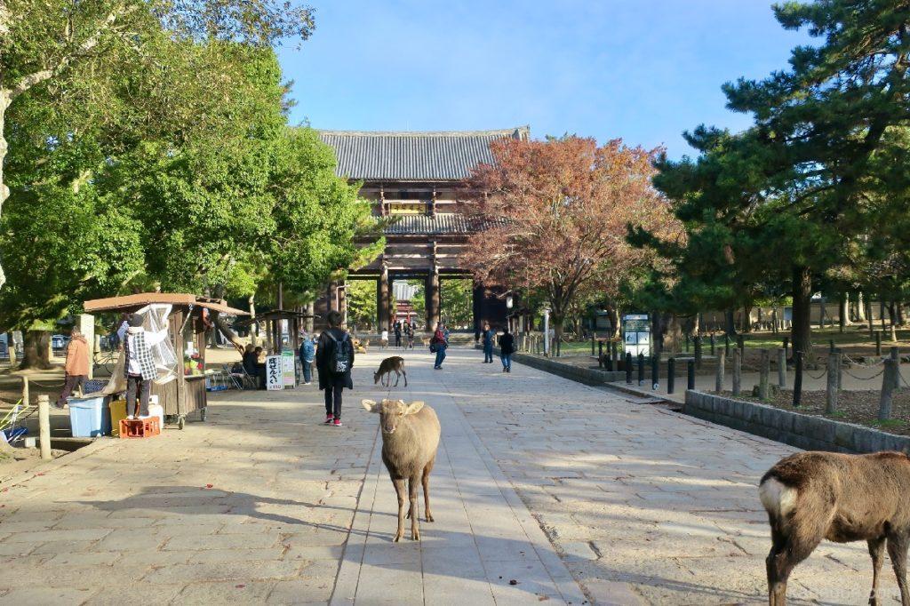 東大寺の入り口