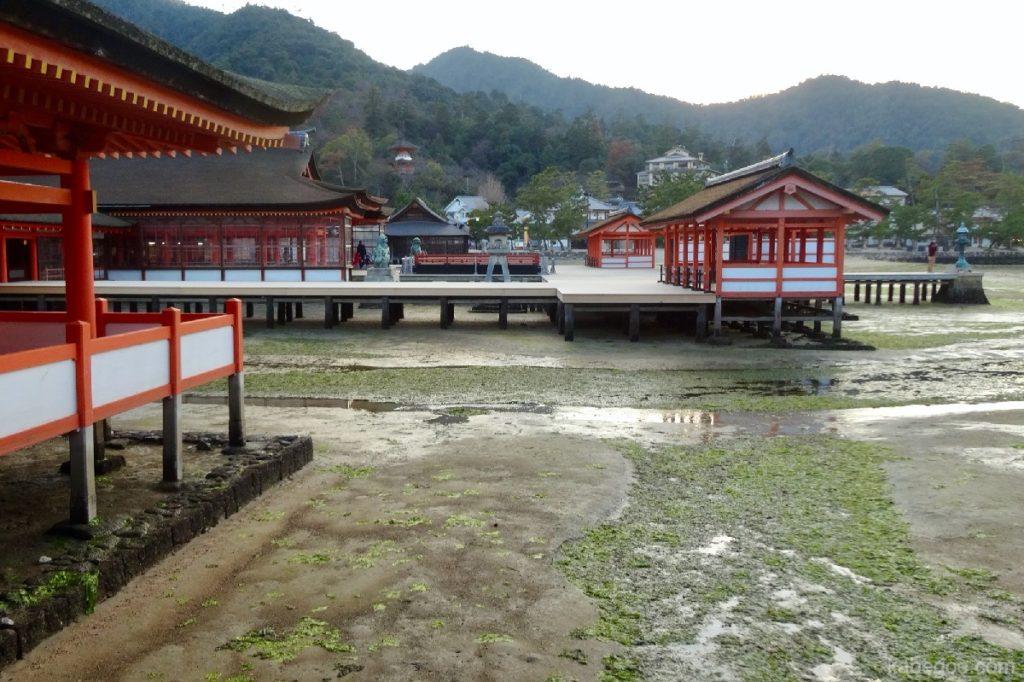 厳島神社の干潮時