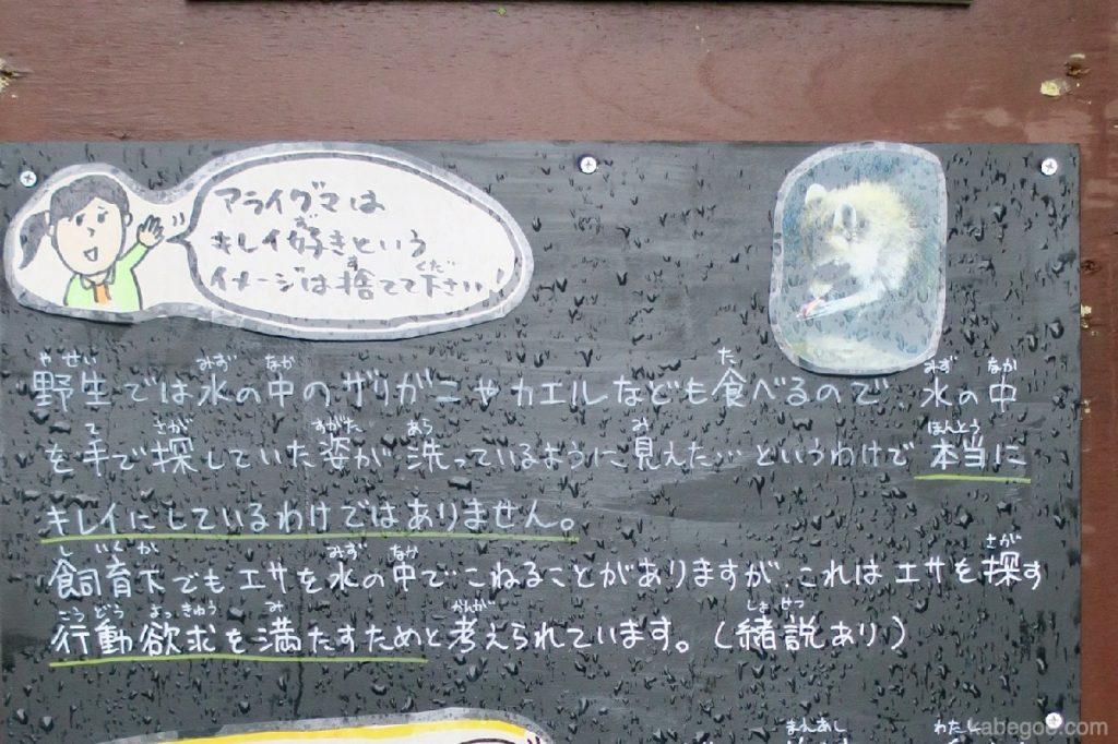 旭山動物園の手書きポップ