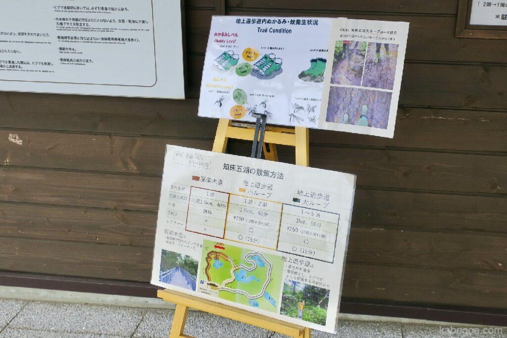 知床五湖のコース紹介