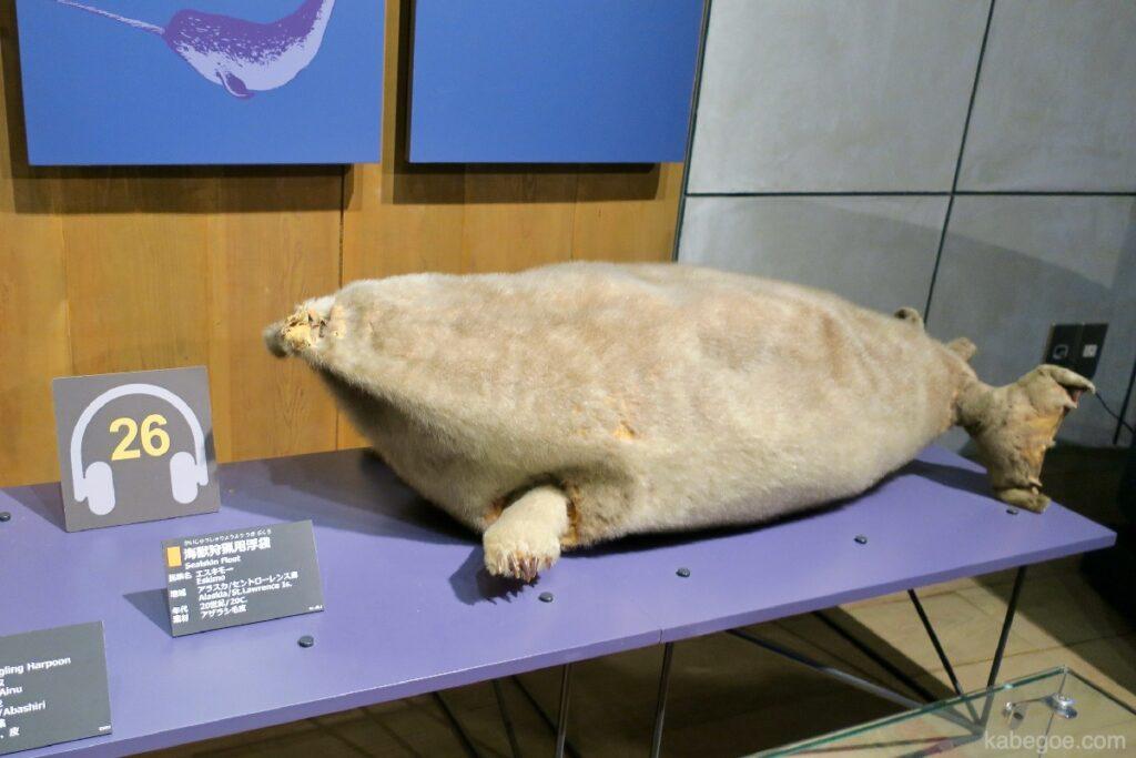 北方民族博物館のアザラシ浮き袋