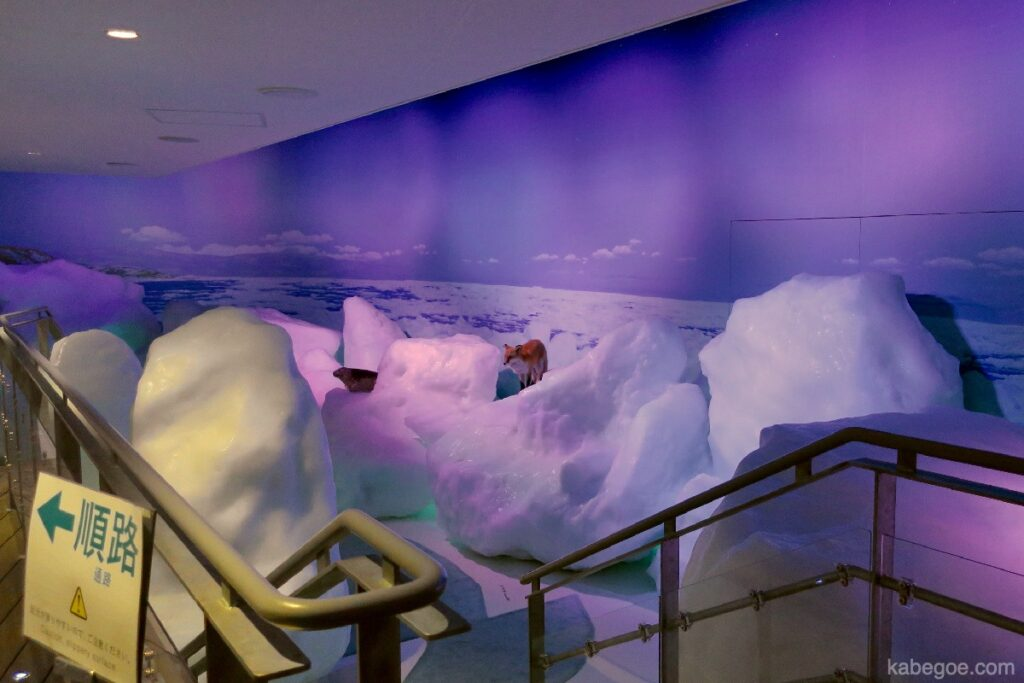 オホーツク流氷館の流氷体験テラス