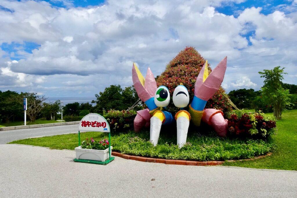 海洋博公園の花ヤドカリ