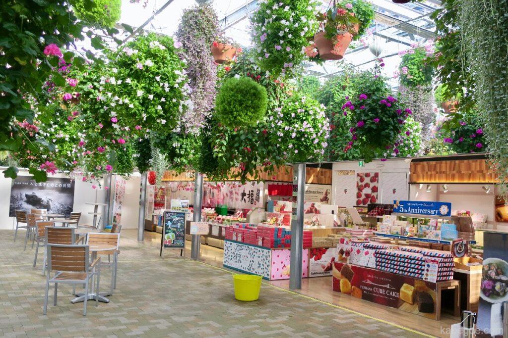 Mishima Skywalk Sky Garden Flowers