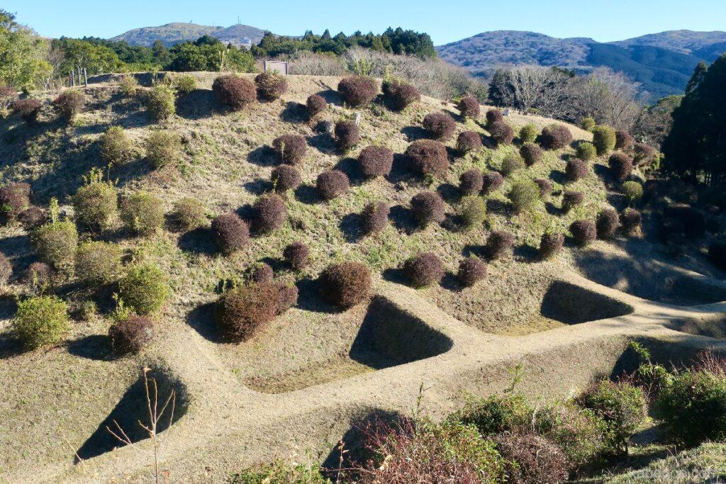 Parit Reruntuhan Kastil Yamanaka