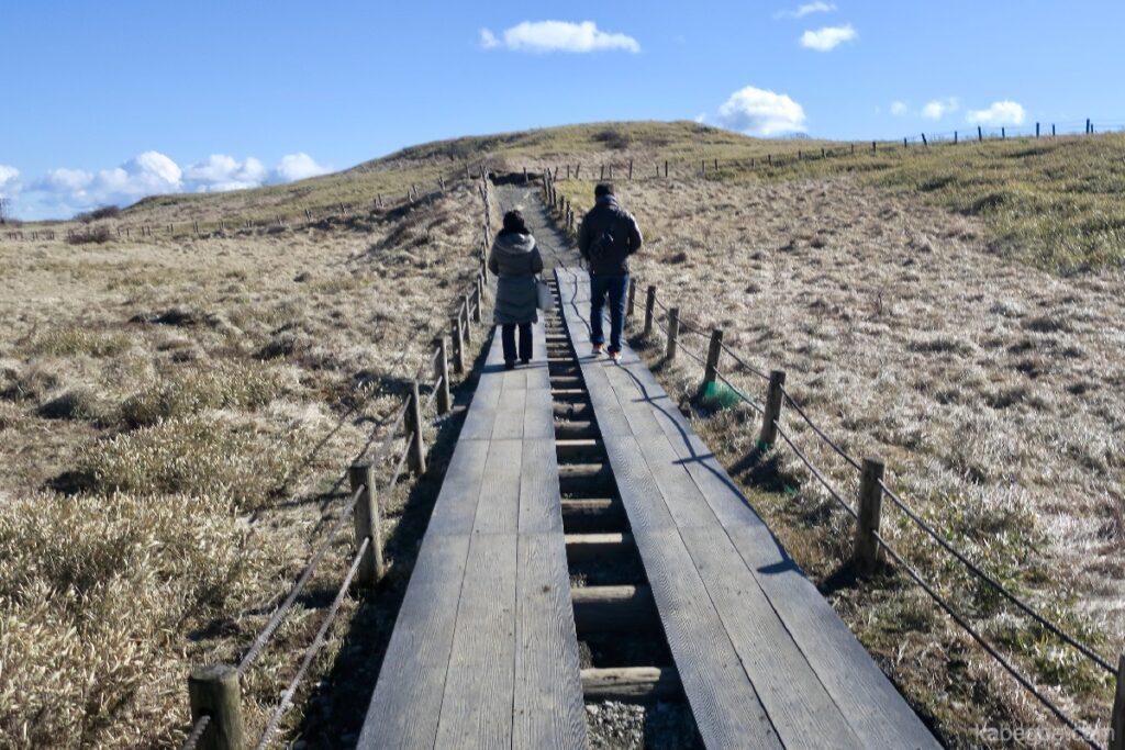 駒ヶ岳ロープウェーの頂上の道