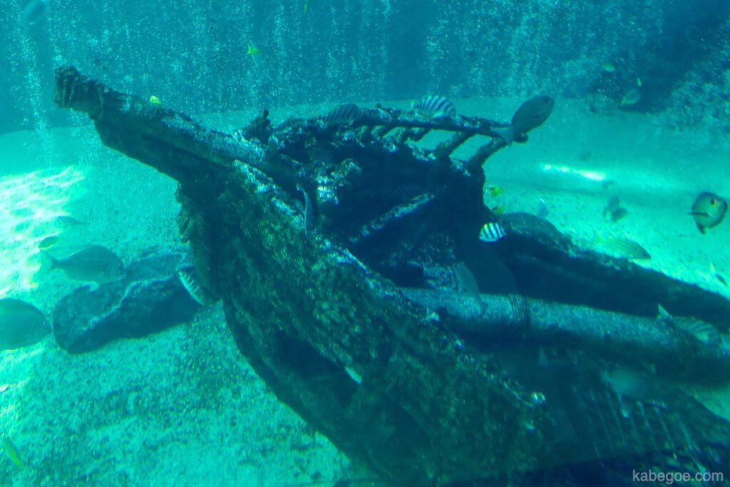 Nave affondata dell'acquario di Hakone