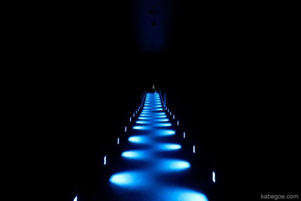 チームラボ プラネッツの光る廊下