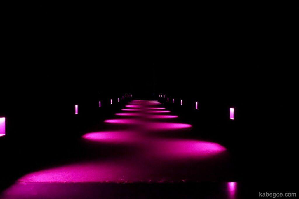 チームラボプラネッツの光る廊下