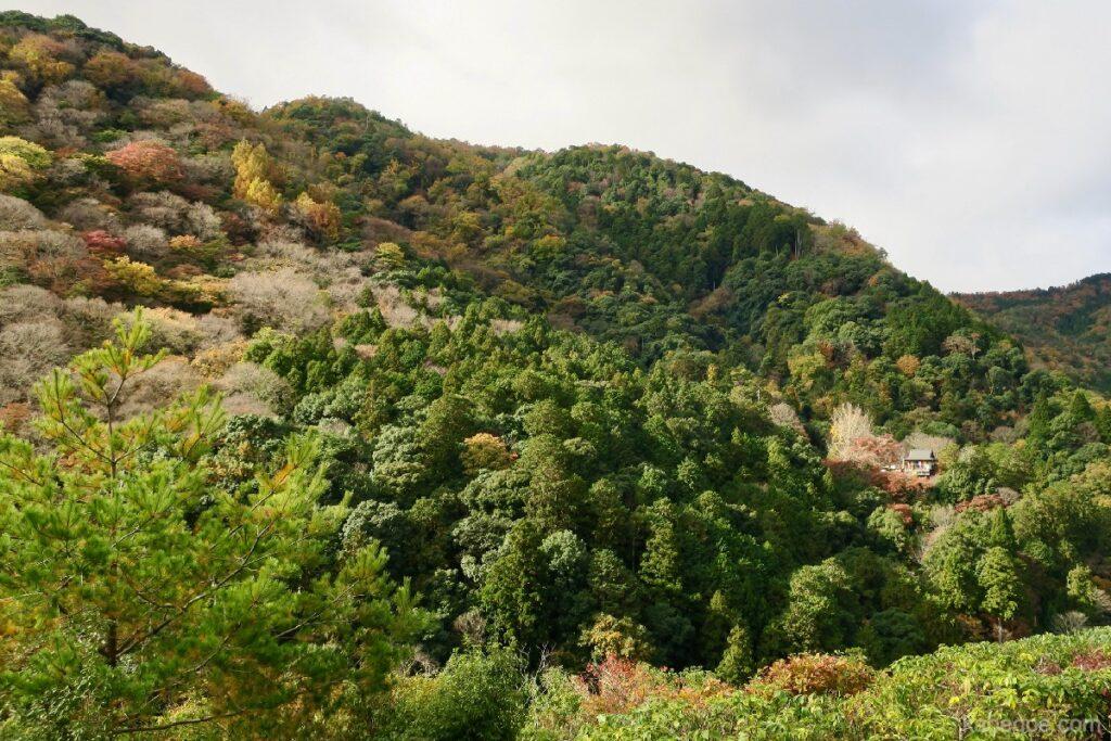 大河内山荘庭園の山頂からの景色