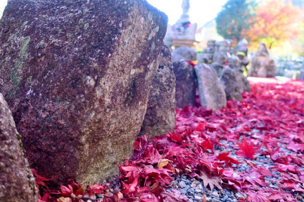 Daun musim gugur di Kuil Adashino Nenbutsuji