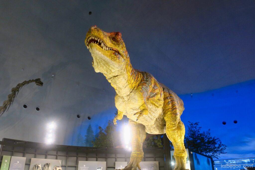 Memindahkan Tyrannosaurus di Museum Dinosaurus Fukui