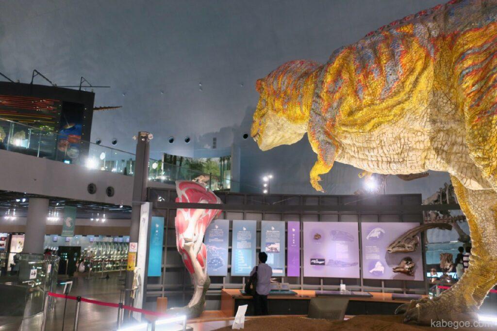 Tyrannosaurus di Museum Dinosaurus Fukui