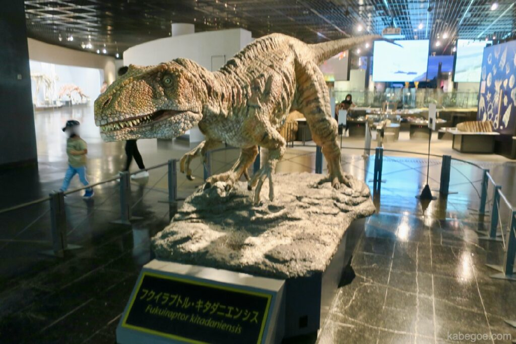 Fukuiraptor di Museum Dinosaurus Fukui