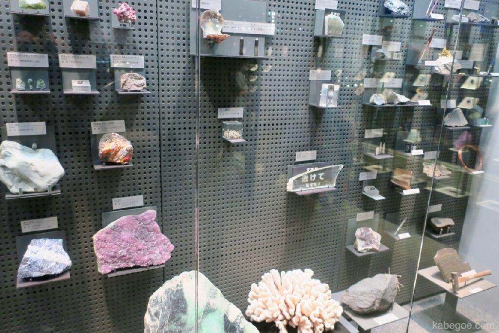 Pojok Mineral Museum Dinosaurus Fukui