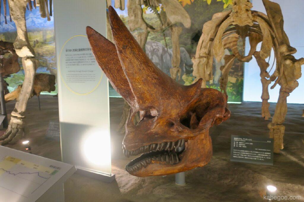 Arsinoitherium di Museum Dinosaurus Fukui